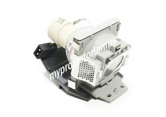 Viewsonic PJ513 Projector Lamp with Module