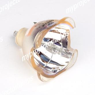 Benq (ベンキュー) 5J.J0105.001 プロジェクター用電球バルブ