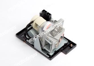Benq MP670 Projector Lamp with Module