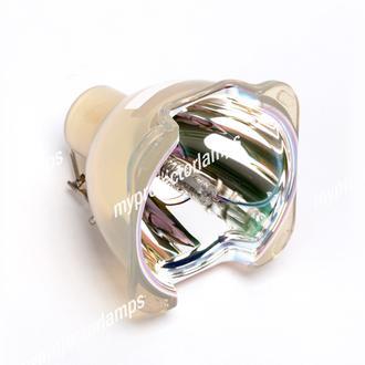 Benq 5J.J2G01.001 Bare Projector Lamp