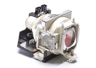 Benq PB8258 Projector Lamp with Module