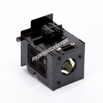 Benq PE8700 Projector Lamp with Module
