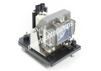 Benq PW9500 Projector Lamp with Module