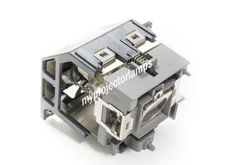 Benq SP891 Projector Lamp with Module