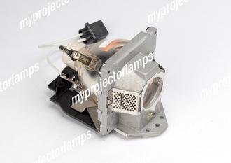 Benq SP920P (#2) Projector Lamp with Module