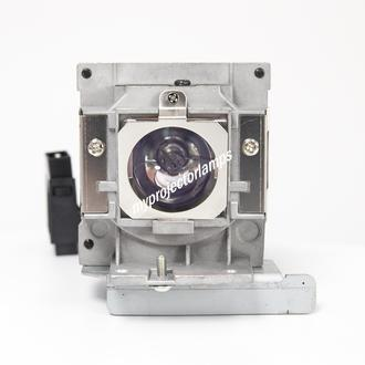 Benq SX914 Projector Lamp with Module