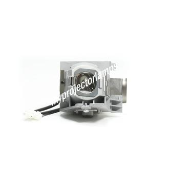 Benq W1110 Projector Lamp with Module