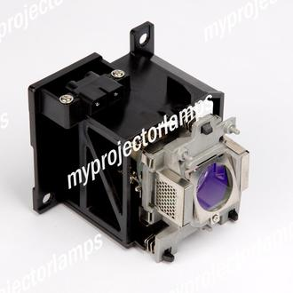Benq W30000 Projector Lamp with Module