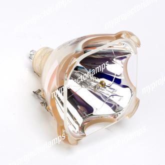 Elux 1730050 Projektorbirne