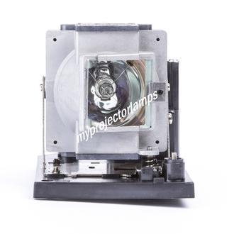 Eiki AN-PH50LP1 Bare Projector Lamp