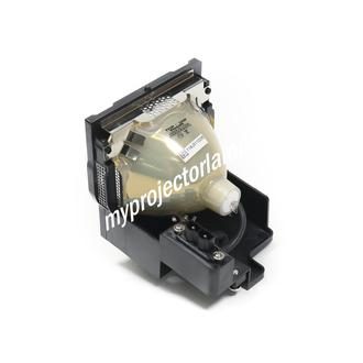 Eiki LC-UXT3 Projector Lamp with Module