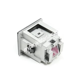 Christie DWU550-G Projector Lamp with Module