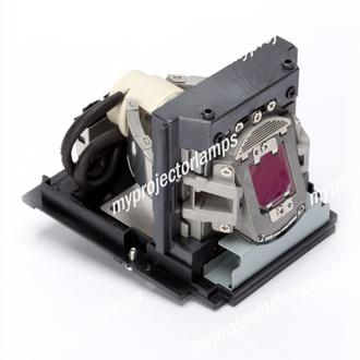 Christie DWU675-E Projector Lamp with Module