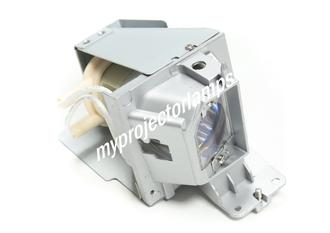 Dell 1220 Projector Lamp with Module
