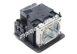 NEC VT460J Projector Lamp with Module