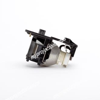 TEQ DT01021 Projector Lamp with Module