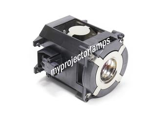 NEC NP-PA671WJL Projector Lamp with Module