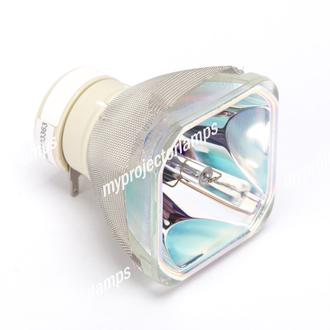 Dukane DT01251 Bare Projector Lamp