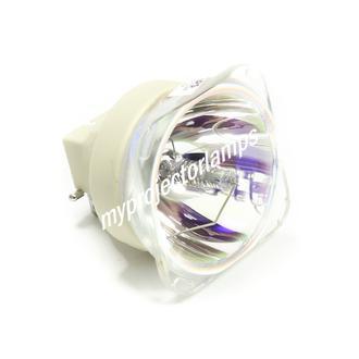 Eiki 5811118436-SEK Lampa projektorowa bez obudowy