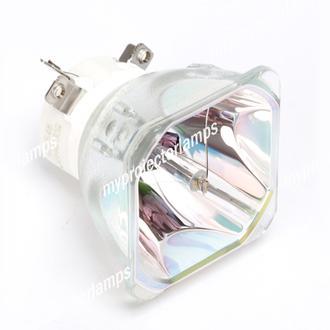 Eiki 23040021 Bare Projector Lamp