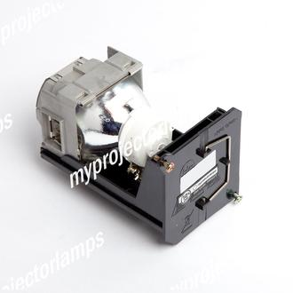 Eiki 23040021 Projector Lamp with Module