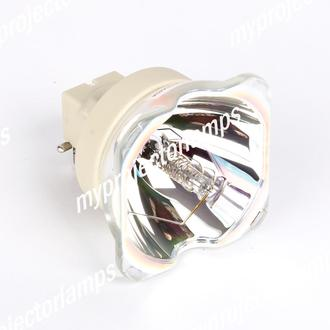 Christie DT01295 Bare Projector Lamp
