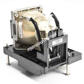 Infocus IN5554L Projector Lamp with Module