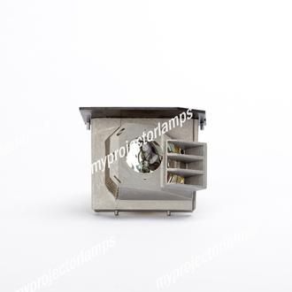 Infocus X10 Projector Lamp with Module