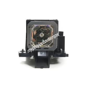 JVC DLA-VS2200 Projector Lamp with Module