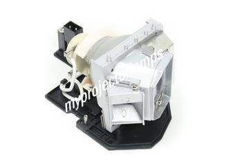 LG BE320-SD Projector Lamp with Module