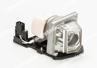 LG BS275 Projector Lamp with Module