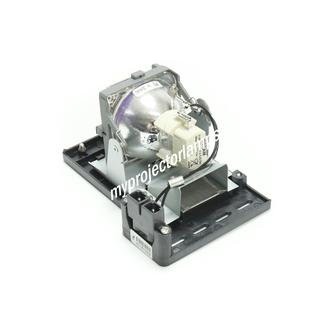 LG DS420 Projector Lamp with Module