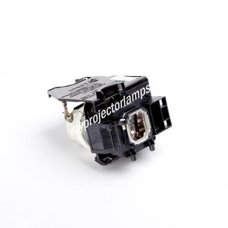 NEC NP-P350W Projector Lamp with Module