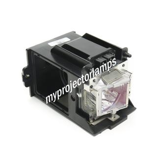 NEC NP-9LP01 Projector Lamp with Module