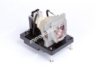 NEC PX800X Lámpara para proyector con carcasa
