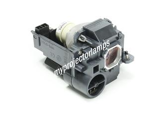 NEC UM351Wi-WK Projector Lamp with Module