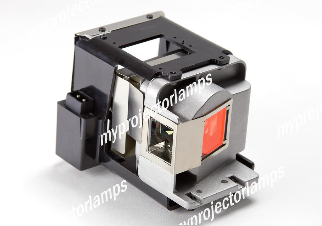 Optoma EH501 Projector Lamp with Module-MyProjectorLamps com