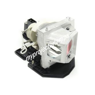Optoma SP.8TM01GC01 Projector Lamp with Module