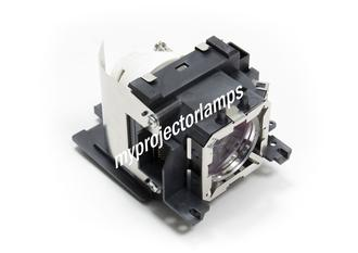 Panasonic PT-VX42Z Projector Lamp with Module