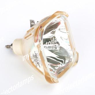 Philips LCA3111 Projektorilamput, pelkkä polttimo