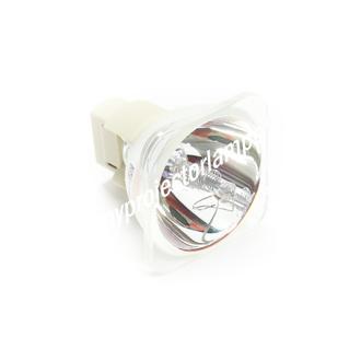 Planar PD7170 Bare Projector Lamp