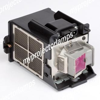Planar PD7170 Projector Lamp with Module