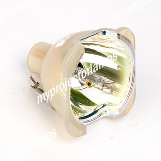 Projection Design 400-0184-00 Bare Projector Lamp