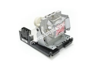Vivitek D929TX Projektorlampen mit Modul