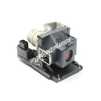 Ricoh PJ WX4240N プロジェクターランプユニット