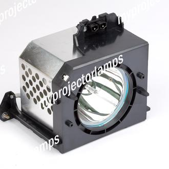 Samsung BP96-00224J RPTV Projector Lamp with Module