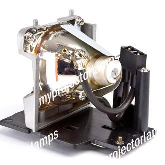 Samsung SP-D400 Projectorlamp met Module