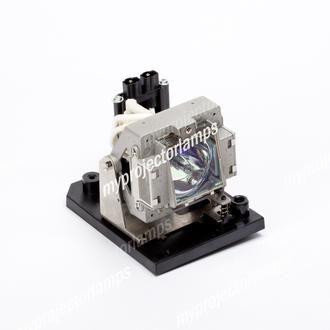 Sanyo PDG-DXT10L Projector Lamp with Module