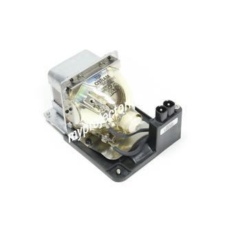 Sanyo PLC-WXU1000C Projector Lamp with Module