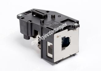 Sharp XR-HB007X-L Projector Lamp with Module